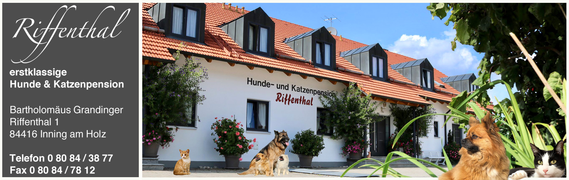 Hunde und Katzenpension Riffenthal